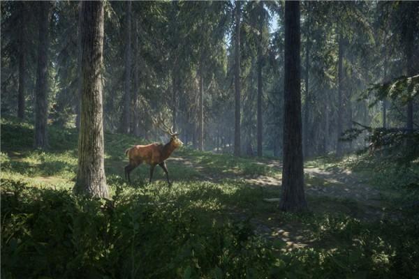猎人荒野的呼唤官方正式版下载