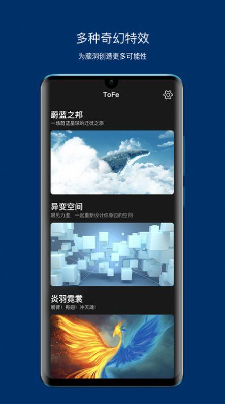 tofe官方版